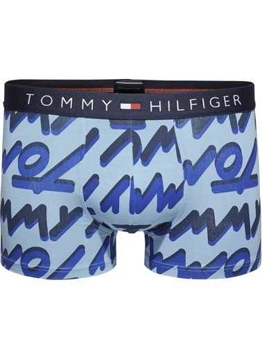 Tommy Hilfiger Erkek Trunk Bold Type Boxer UM0UM00866 Mavi